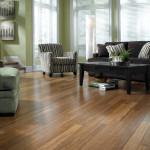 Bamboo flooring (2)